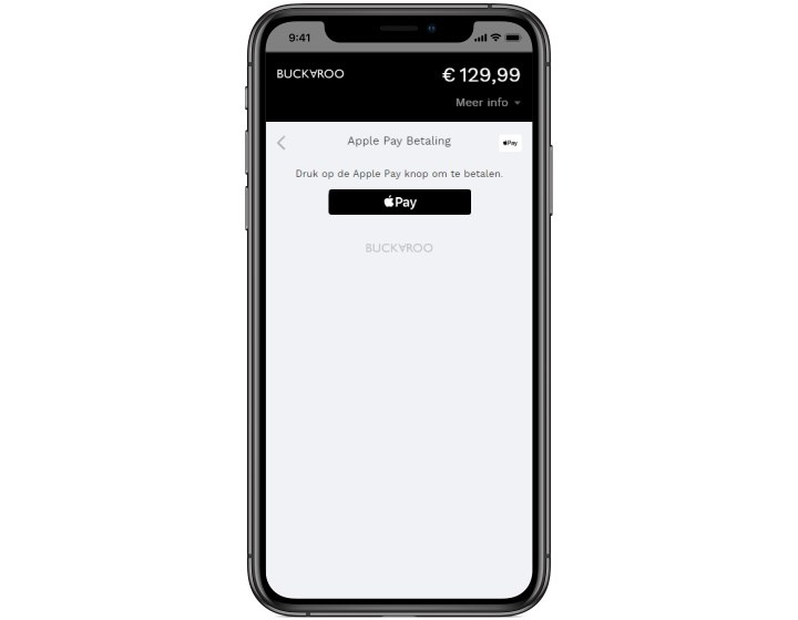 Apple Pay payment webshop
